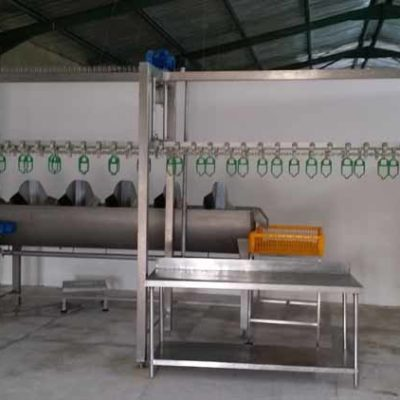 MPES Compact 4000 Line Spin Washer-EV Line-Drip Line-Packing Table