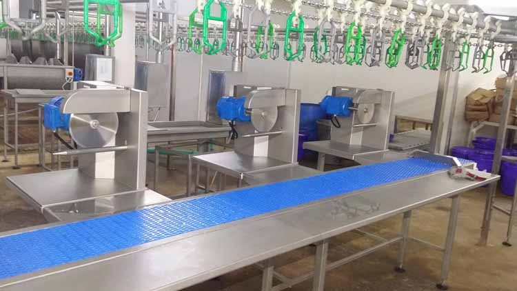 MPES Cut Up-Drip Line Conveyor